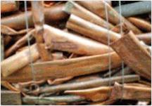 비철금속 재활용 사업